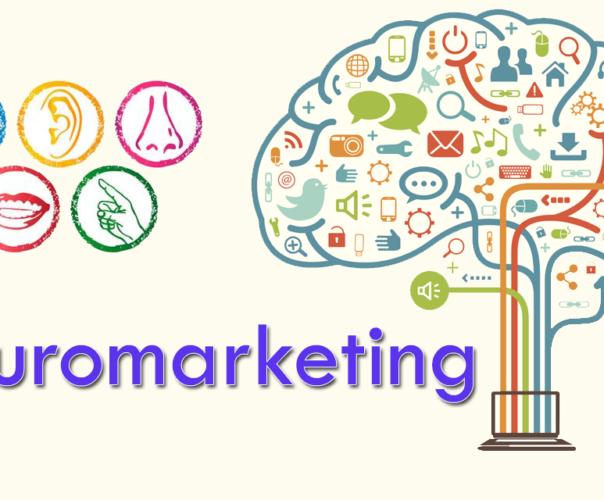 El neuromarketing y su efecto sobre las campañas atractivas